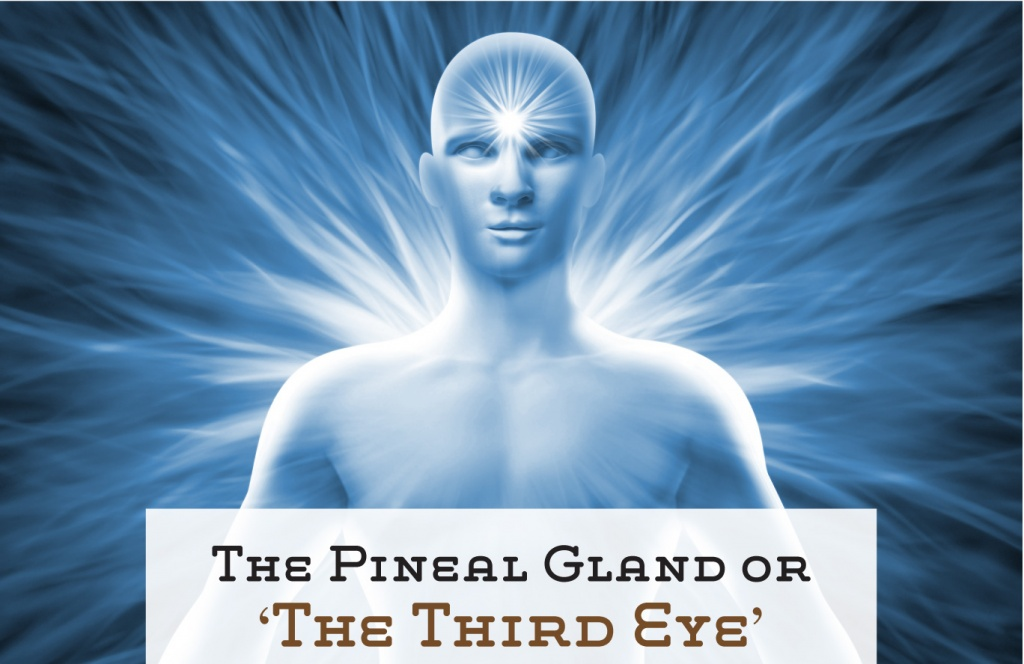 The pineal gland or 'The third eye' Beyond science