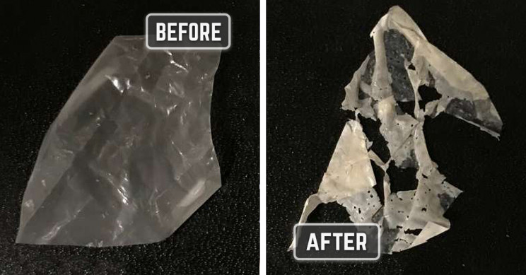 Breaking Down Biodegradable Plastics? Just Add Heat and Water